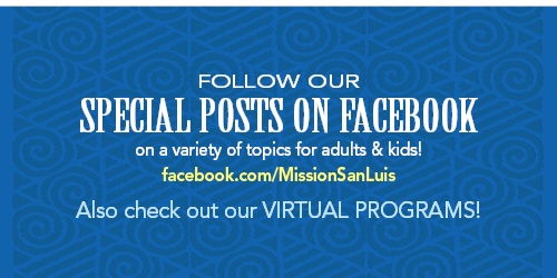 Check Out Our Special Posts on Facebook